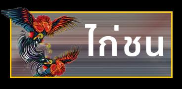 แทงไก่ชนออนไลน์ UFABET แทงไก่ไทย พนันไก่ชนไทยออนไลน์