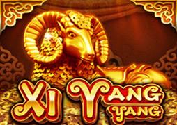 Xi Yang Yang jdb